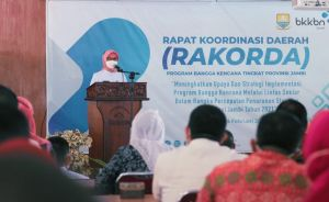 Kerjasama Mulitosektor, Upaya Pj Gubernur Jambi Atasi Stunting