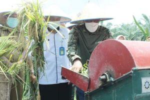 Wabup Bakhtiar Sebut Sektor Pertanian jadi Prioritas